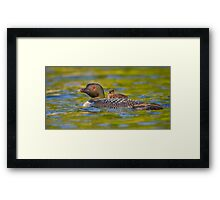 Now introducing... Framed Print