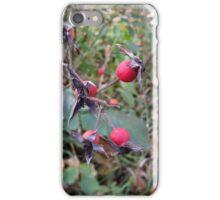 fruits of autumn iPhone Case/Skin