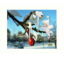 The Icicles Art Print