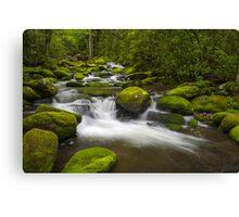 Smoky Mountains Paradise - Great Smoky Mountains Gatlinburg TN Canvas Print