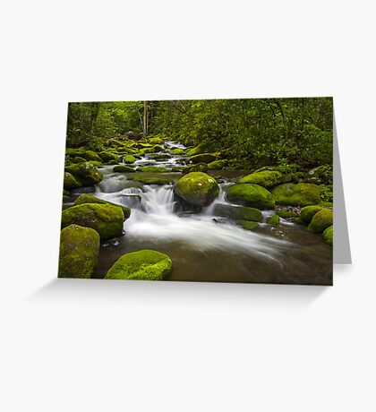 Smoky Mountains Paradise - Great Smoky Mountains Gatlinburg TN Greeting Card