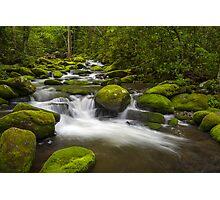 Smoky Mountains Paradise - Great Smoky Mountains Gatlinburg TN Photographic Print