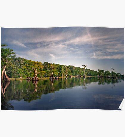 Blue Cypress Lake #3. Poster