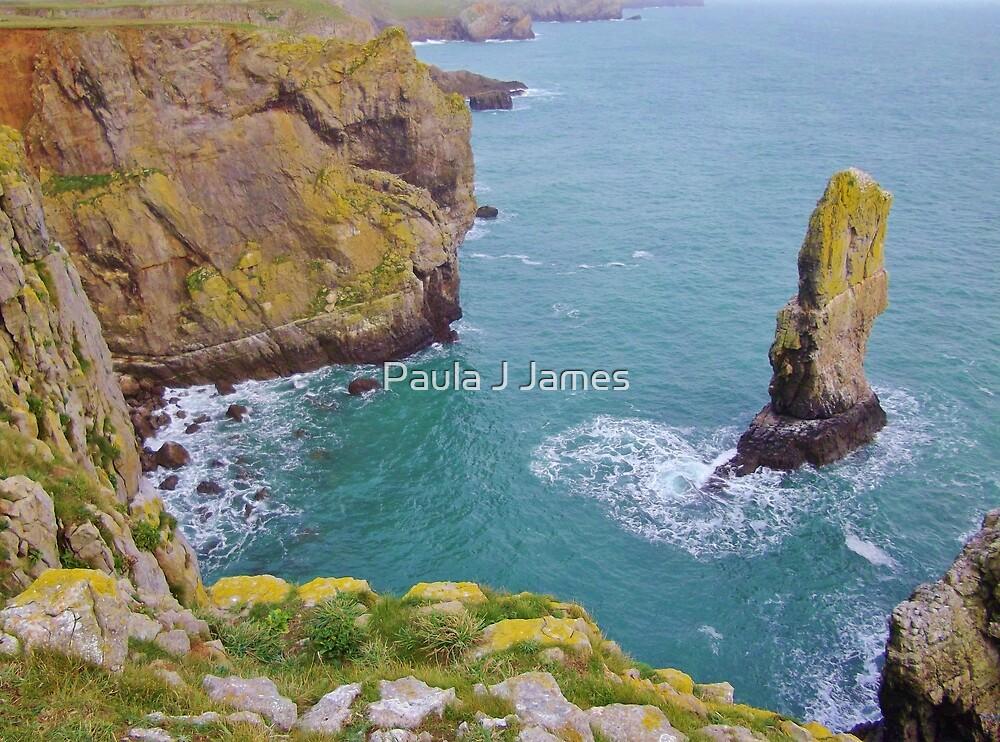 Half of Stack Rocks, Castlemartin, Pembrokeshire by Paula J James