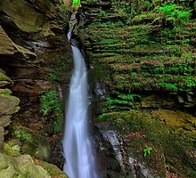 St Nectan's Glen, Tintagel, Cornwall. by Andy Fox