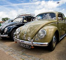 VW 9783 by Steve Woods
