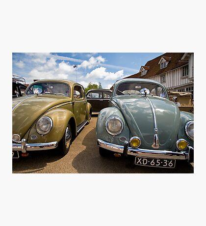 VW 9784 Photographic Print