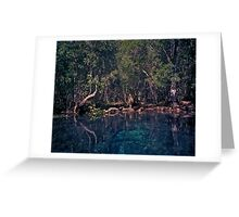 Wacissa Springs #1. Greeting Card