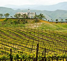 Vineyard Dream Home by Wanda Dumas