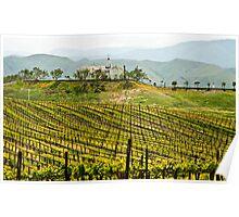 Vineyard Dream Home Poster