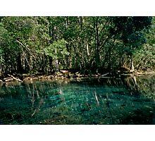 Wacissa Springs #2. Photographic Print