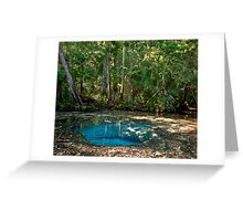 Chassahowitzka Springs. Greeting Card