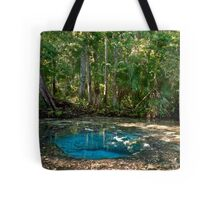 Chassahowitzka Springs. Tote Bag