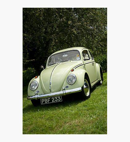 VW 9851 Photographic Print