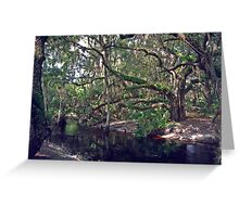 Parker Slough #1 Greeting Card