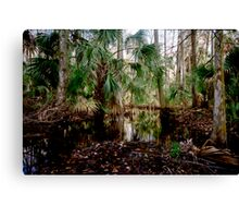 Parker Slough #2. Canvas Print