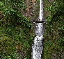 """Upper and Lower Multnomah Falls"" by Lynn Bawden"