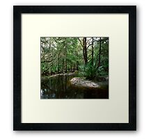 Parker Slough #3. Framed Print