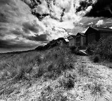 Beech huts by Keith Stocks