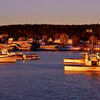 Coastal Maine Sunrise by jasmith162