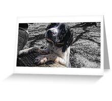 Benson muddy again Greeting Card