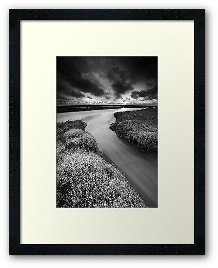 Personal Dawn BW by Andy Freer
