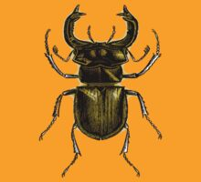 STAG BEETLE by OTIS PORRITT