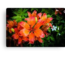 Red, Green and Orange Canvas Print