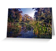 Spring Run. Wacissa Springs. Greeting Card