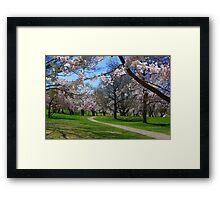 Pathway Framed Print