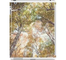 Devils Glen iPad Case/Skin