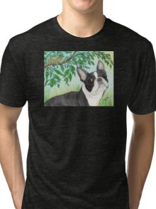 Boston Terrier Dog Tree Frog Cathy Peek Animals Tri-blend T-Shirt