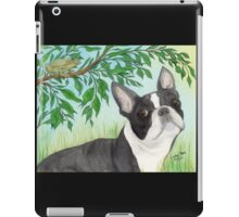 Boston Terrier Dog Tree Frog Cathy Peek Animals iPad Case/Skin