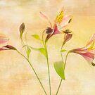 Sweet Bouquet by Rebecca Cozart