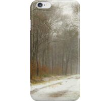 Mist and snow iPhone Case/Skin