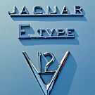 1972 Jaguar E-Type V12 Roadster Emblem by Jill Reger