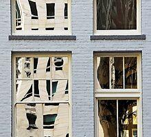 San Francisco Reflection 58 by luvdusty