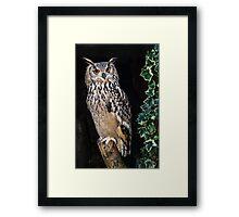 Eagle Owl Framed Print