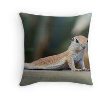 Yoga Ground Squirrel Style  Throw Pillow