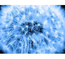 Blue Puff Ball Photographic Print