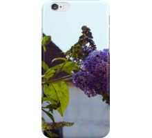 Butterfly Bush in Old Danish Town iPhone Case/Skin