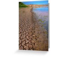 Cracked Shoreline Greeting Card
