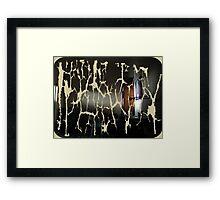 intruding sunlight Framed Print