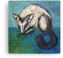 Possum Canvas Print