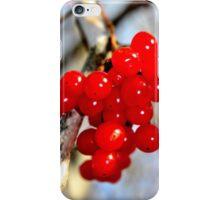 Ripe Highbush Cranberries iPhone Case/Skin