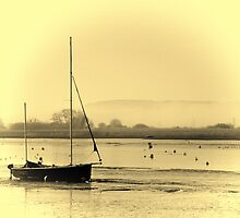 Misty Topsham by Catherine Hamilton-Veal  ©