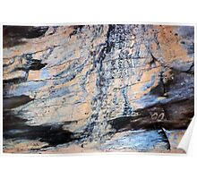 Wood Grain Stains 7 Poster
