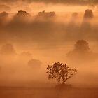 Dawn, Whispered the Mist by John Dunbar