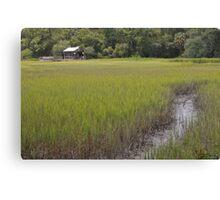 distant plantation Canvas Print