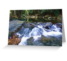cedar creek  ... Greeting Card
